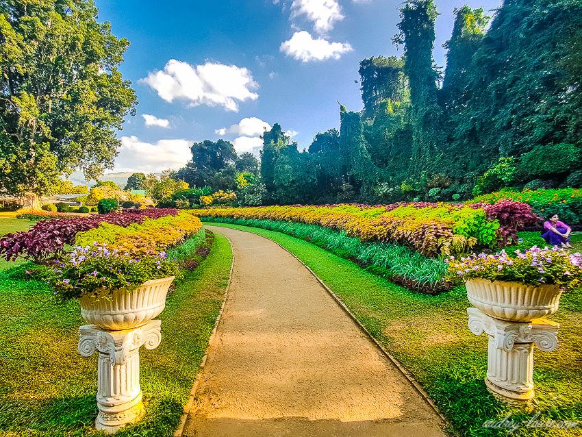 Circuit Stupas et Jardins de thé Privatif 4* - 1